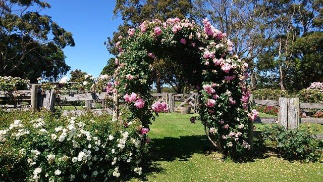 Ten Romantic Garden Elements