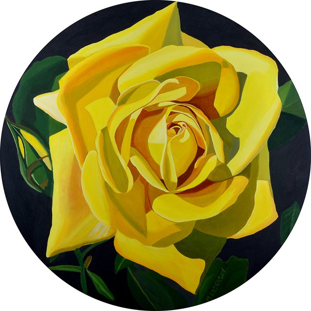 Most Recent Exhibition: The Universal Language of the Rose